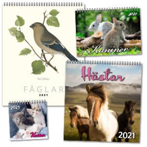 Kalendrar med djur