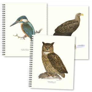 Skrivböcker Fåglar