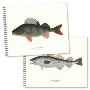 Skrivböcker Fiskar