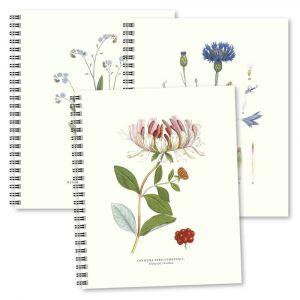 Skrivböcker Växter