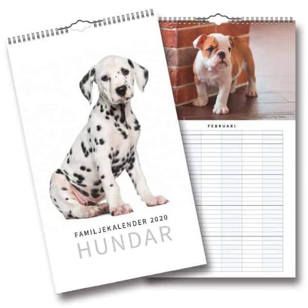 Familjekalender Hundar 2020 Väggkalender 2020 Kalenderspecialisten