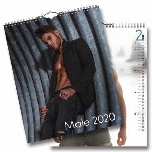 Väggkalender Male 2020 Kalender med snygga killar Kalenderspecialisten