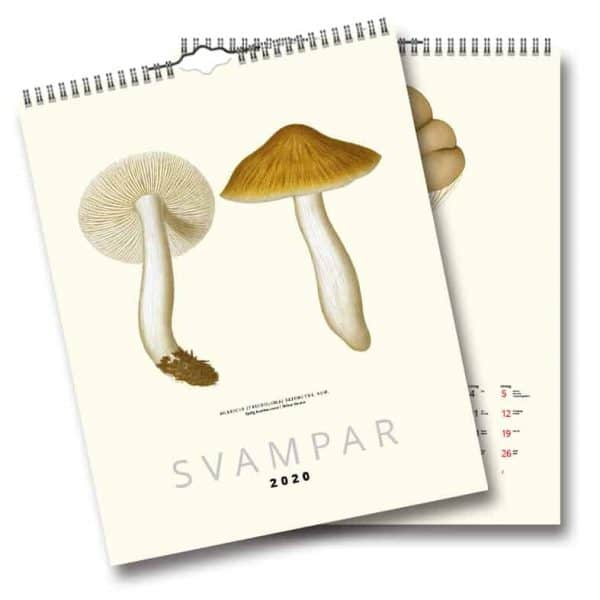 Väggkalender Svampar 2020 är en vacker väggalmanacka med svenska svampar illustrerade på 1800-talet av botanikern och mykologen Elias Magnus Fries. Denna kalender är den perfekta inredningsdetaljen i köket, på torpet eller i sommarstugan. Kalenderspecialisten