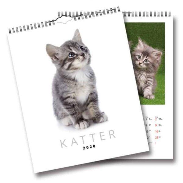 Väggkalender Katter 2020 Söta katter Kalenderspecialisten