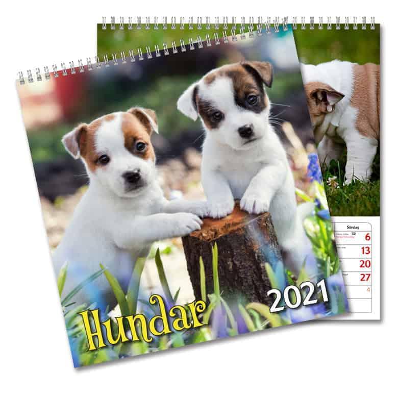 Väggkalendrar 2021 Stort utbud Kalenderspecialisten