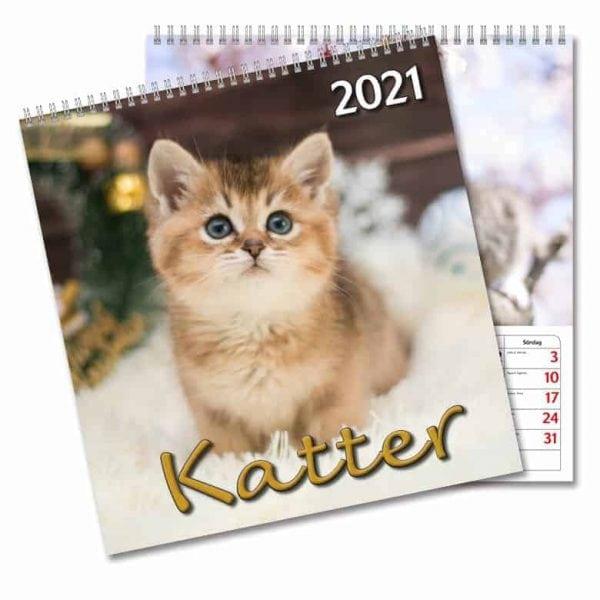 Väggkalender Katter Large 2021 med bilder på söta kattungar. Kalenderspecialisten.
