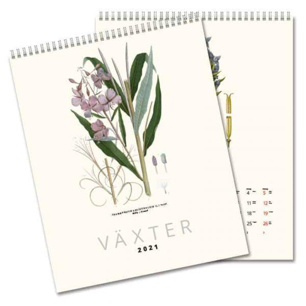 Väggkalender Växter 2021 med illustrerade växter gjorda av C.A.M. Lindman i början av 1900-talet. Kalenderspecialisten.