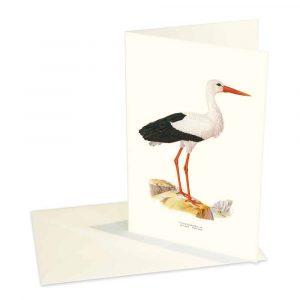 Kort Vit Stork Kalenderspecialisten
