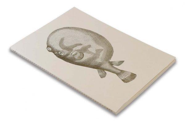 Skissbok A5 ROSSI Blåsfisk hos Kalenderspecialisten