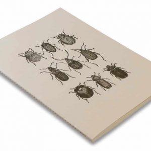 Skissbok A5 ROSSI Skalbaggar hos kalenderspecialisten