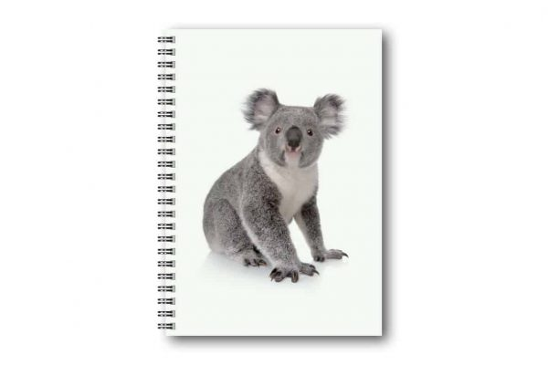 Skrivbok Koala hos kalenderspecialisten