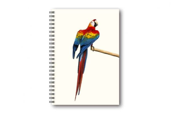 Skrivbok Papegoja hos Kalenderspecialisten