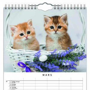 Familjekalender Katter 2022 kalendarium