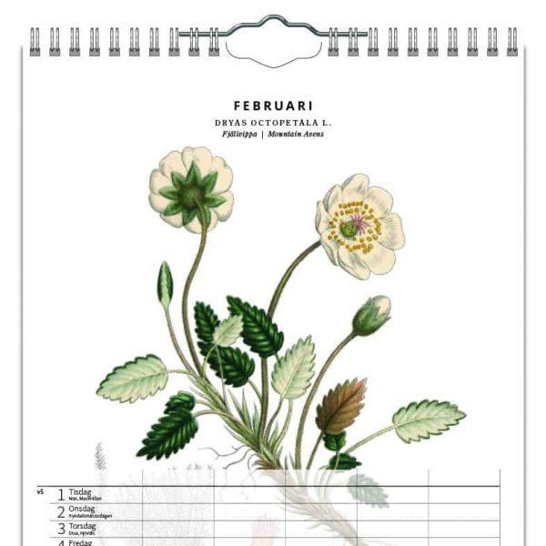Familjekalender Växter 2022 kalendarium