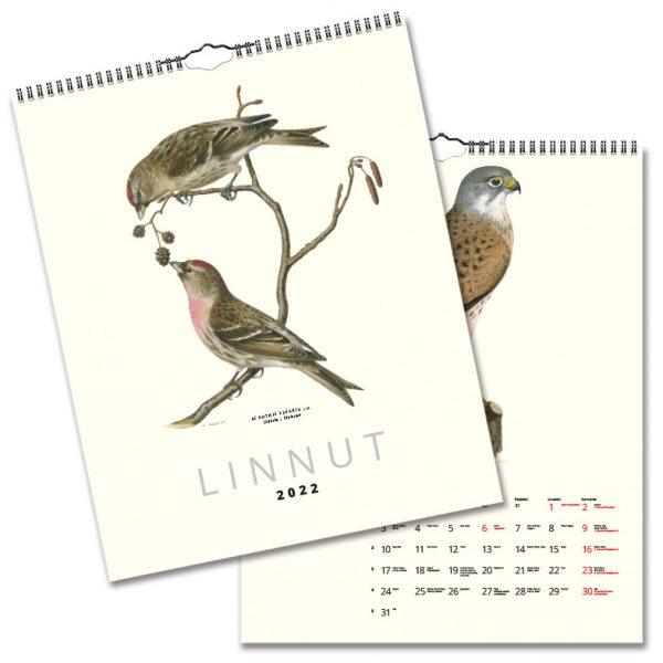 Väggkalender Fåglar 2022 Finsk