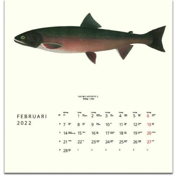 Väggkalender Fiskar 2022 kalendarium