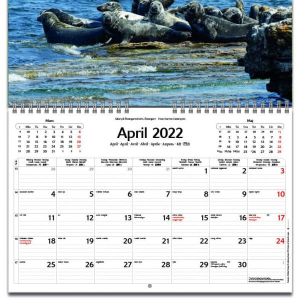 Väggkalender Gotland 2022 kalendarium