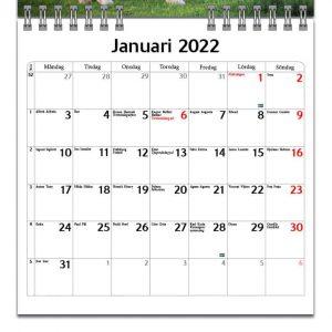 Väggkalender Hästar Mini 2022 kalendarium