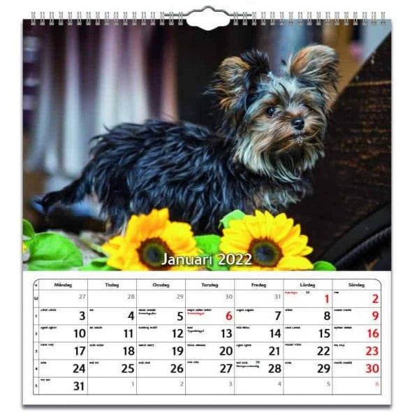 Väggkalender Hundar Large 2022 kalendarium