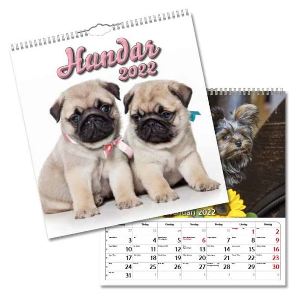 Väggkalender Hundar Large 2022 hos kalenderspecialisten