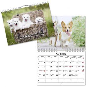 Väggkalender Hundar Small 2022 hos Kalenderspecialisten