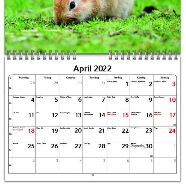 Väggkalender Kaniner Small 2022 kalendarium