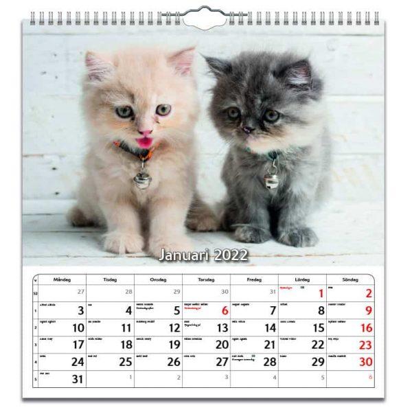 Väggkalender Katter Large 2022 kalendarium
