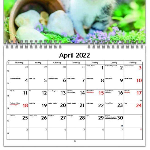 Väggkalender Katter Small 2022 kalendarium