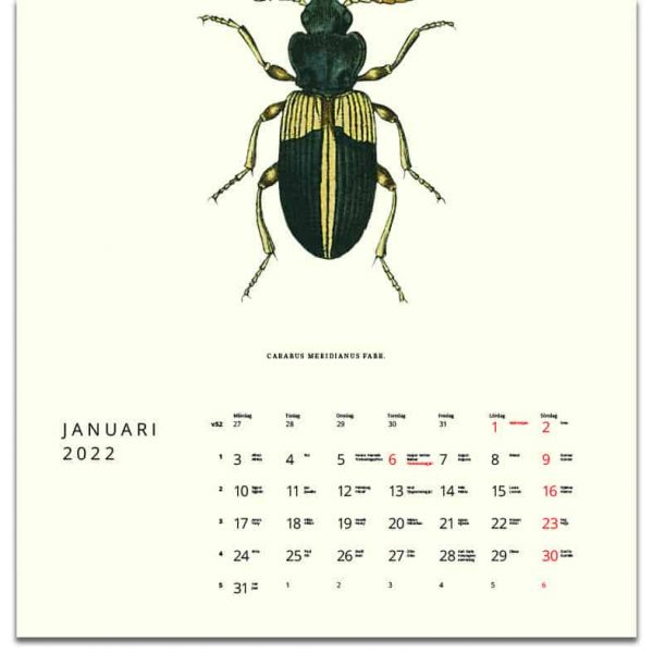 Väggkalender Småkryp 2022 kalendarium